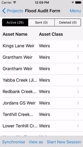 Use case flood audit overview